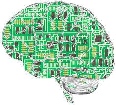 This is an image of a computer circuit board in the shape of a human brain.